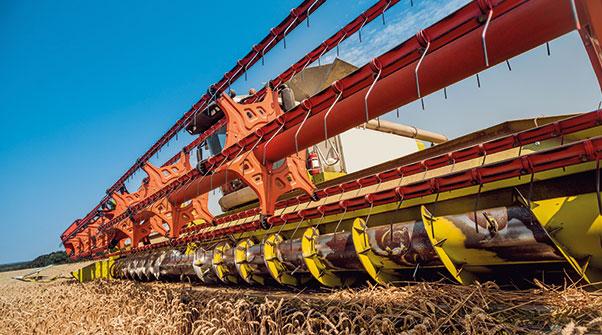 flt_agricoltura